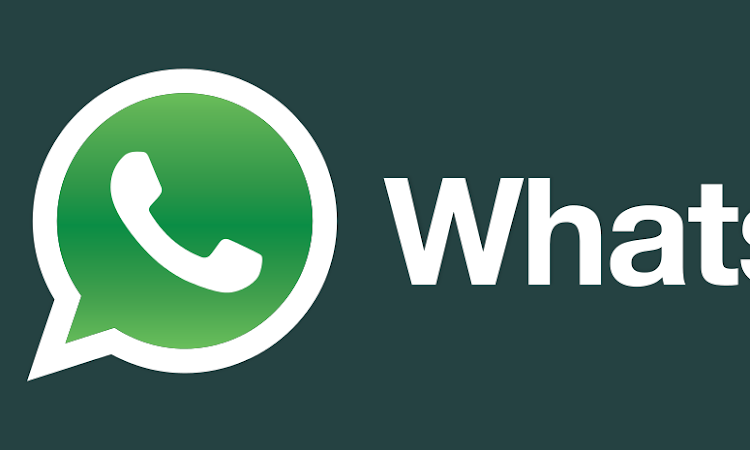 WhatsApp Messenger APK Free Download Latest Version 2.12.259