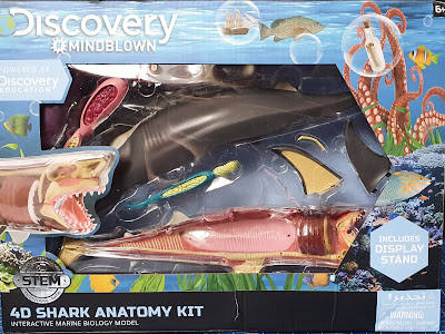 Discovery Mindblown 4D Shark Anatomy Kit review age 6+