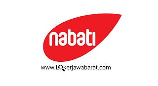 LOWONGAN KERJA TERBARU BULAN JUNI 2020 DI PT Kaldu Sari Nabati Indonesia (Nabati Group)