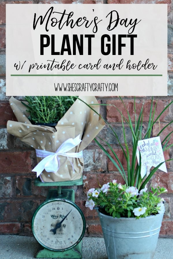 Mother's Day plant gift with printable card and holder