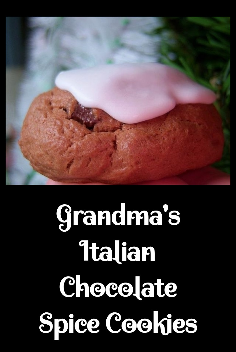 this is a recipe on how to make a chocolate Italian spice cookie these cookies have cinnamon in them and chocolate. They are frosted with a white frosting and are a popular Italian Christmas Cookie
