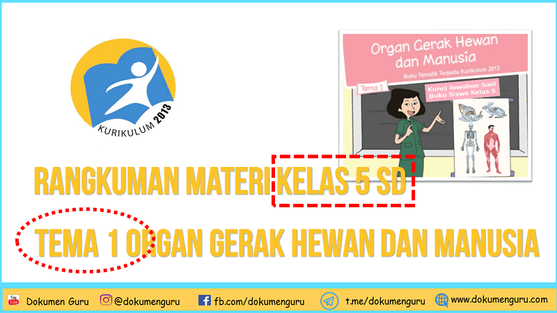 Rangkuman Materi Kelas 5 SD Tema 1 Organ Gerak Hewan dan Manusia