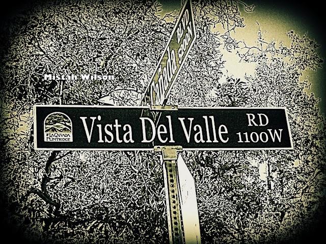 Vista Del Valle Road, La Cañada Flintridge, California by Mistah Wilson
