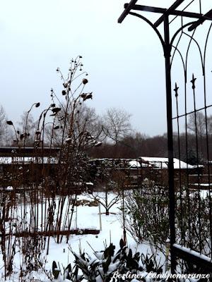 Garten mit Schneedecke