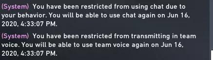 Sistem Chat Restriction Punishment Valorant