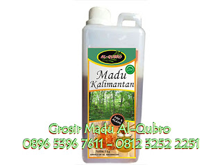 Jual Madu Murni, Jual Madu Asli Hutan Kalimantan, Jual madu asli al qubro hutan kalimantan