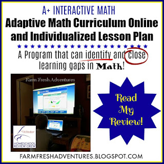 A+ Interactive Math~ A Review