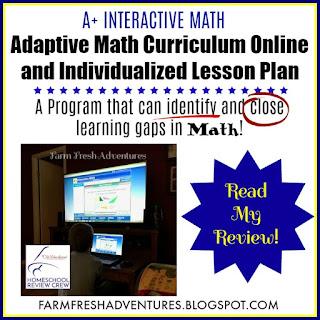 A+ Interactive Math~ A Review