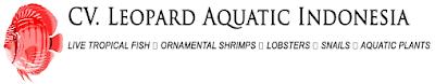 Lowongan Kerja CV Leopard Aquatic Indonesia