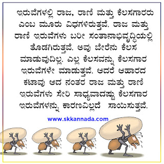ant Amazing Facts in Kannada