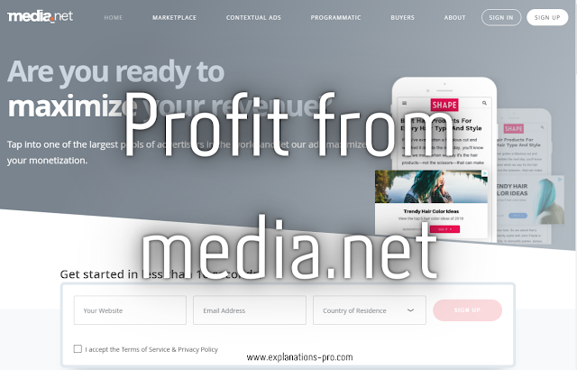 Profit from media.net