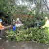 Sinergitas TNI POLRI Bantu Warga Bersihkan Dahan Pohon Yang Rubuh Menimpa Rumah Warga