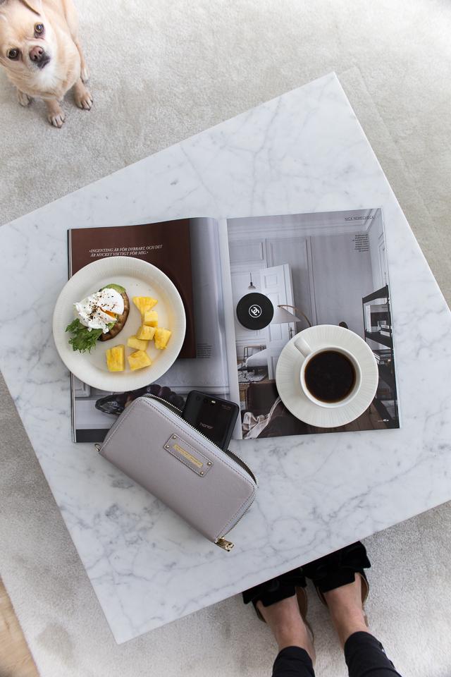 Villa H, aamiainen, chihuahua, uppomuna, aamupala