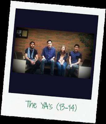 The YA's (2013 - 2014)