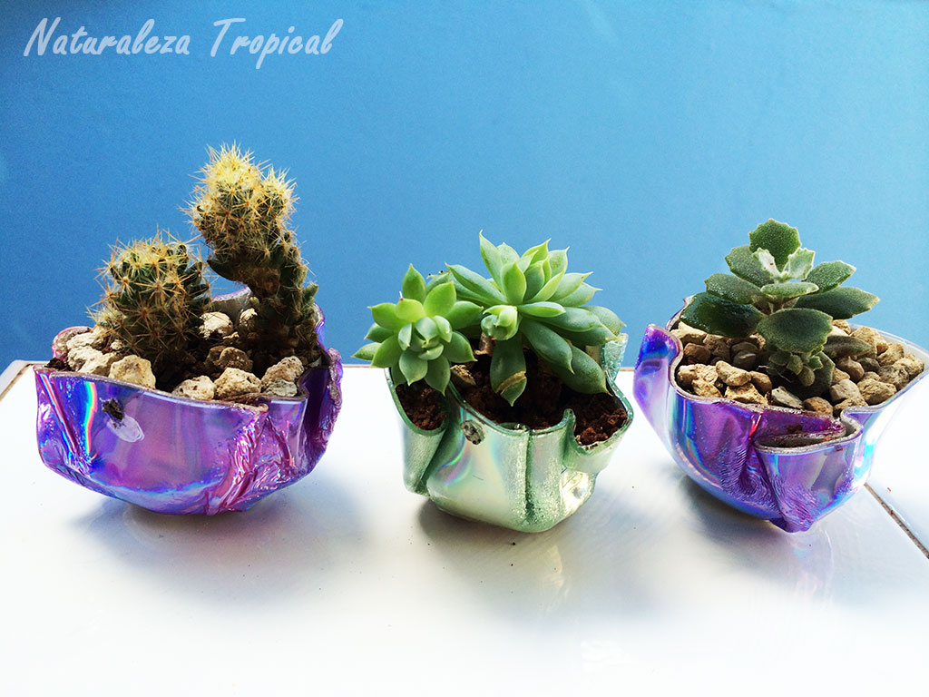Naturaleza tropical como hacer y decorar macetas con cds for Plantas en macetas