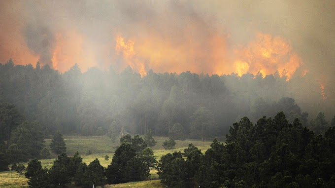 Usa, Colorado devastato dagli incendi
