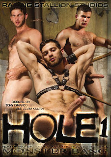 http://www.adonisent.com/store/store.php/products/hole-