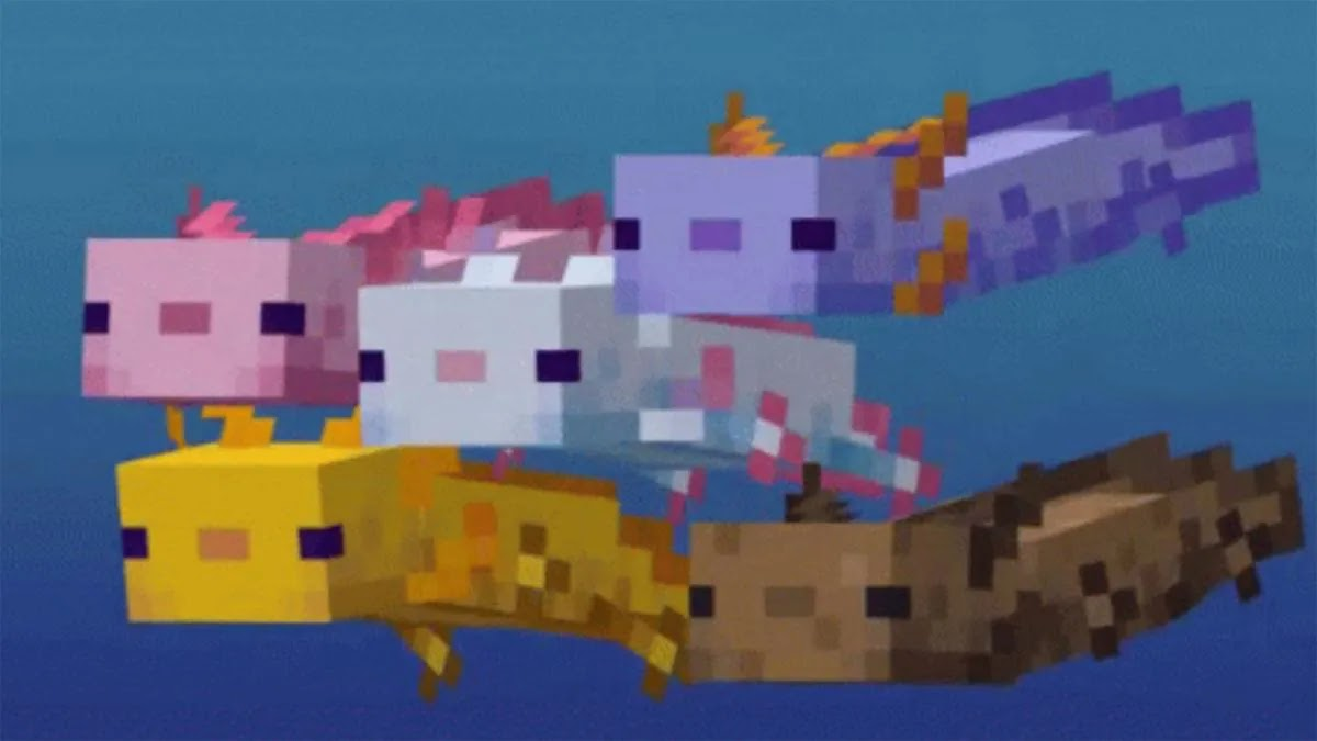How to create axolotls in any seed in Minecraft