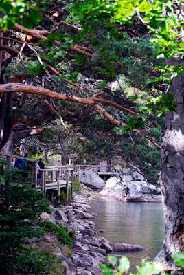 Otra vista de la pasarela peatonal de madera, que rodea la Laguna, facilita el acceso y no desentona con el ambiente  para nada.