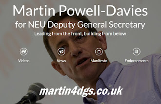 Click below for the Martin4DGS campaign website
