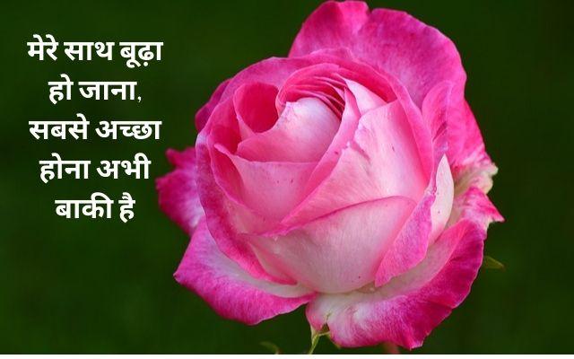I Love You Propose Shayari In Hindi For Girlfriend