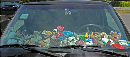 stuffed animals car
