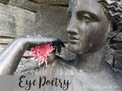 Eye Poetry 06 Die Kreative Herausforderung Fur Juni Juli