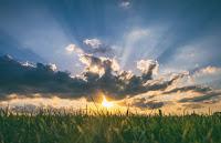 Sunburst - Photo by Aaron Burden on Unsplash