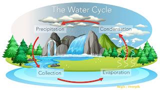banjir bengkulu penyebab dan solusinya