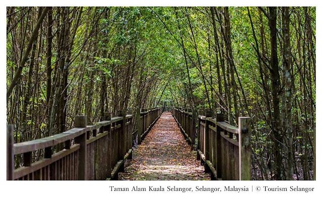 Taman Alam Kuala Selangor Nature Park Selangor Malaysia - Ramble and Wander