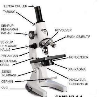 14 Bagian – Bagian Mikroskop dan Fungsinya