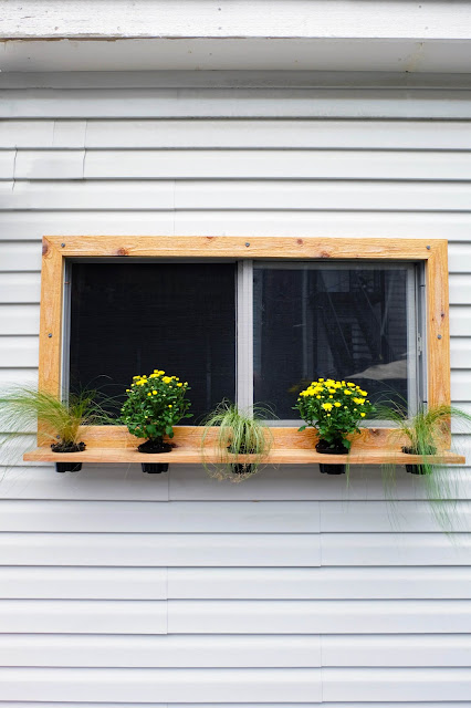 plant float shelf wood outdoor garage