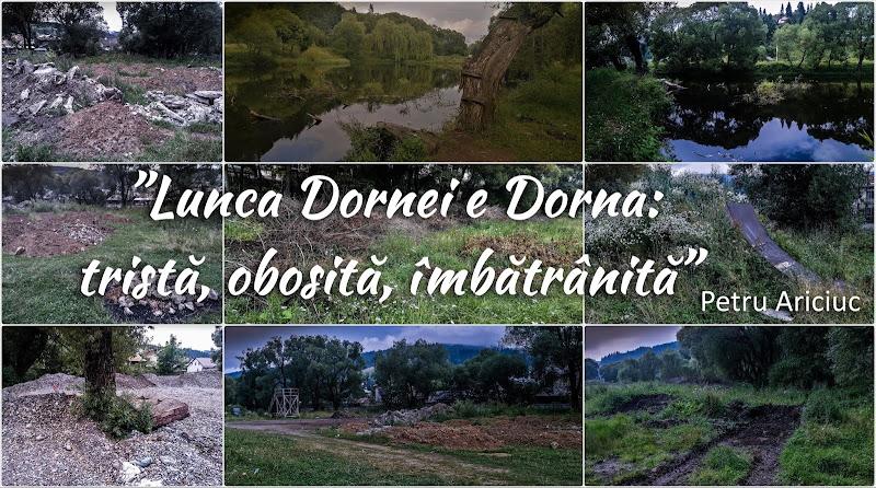 """Petru Ariciuc, postare virală pe Facebook despre proiectul """"Lunca Dornelor"""" și starea actuală a Dornei"""
