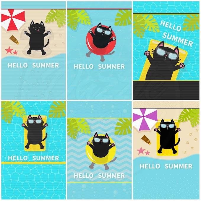 Summer Kitty Wallpaper Set
