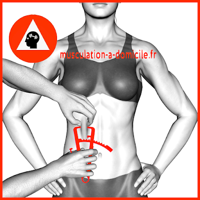 mesure ventre femme pince à plis cutanés adipomètre musculation fitness