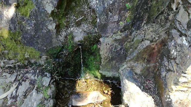 Nascentes de água