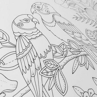 Magical Jungle Nuevo libro para colorear de Johanna Basford