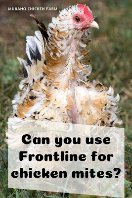 frontline use on chickens