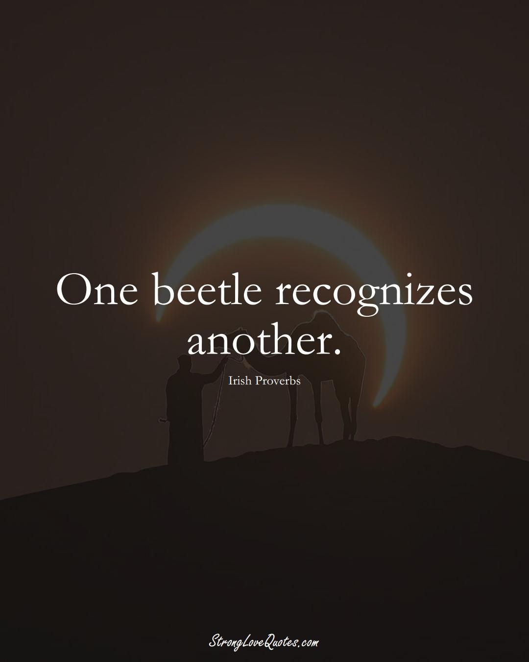 One beetle recognizes another. (Irish Sayings);  #EuropeanSayings