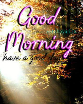 new GOOD MORNING phota DOWNLOAD