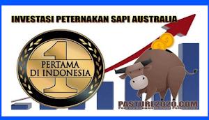 Pasture Apk, Cara Bermain Aplikasi Pasture penghasil Saldo Dana , Uang Gratis 2020