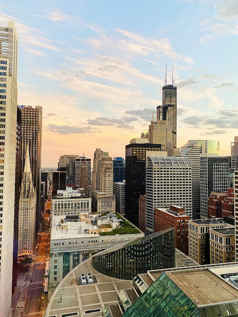 Downtown Chicago Skyline Fall 2020