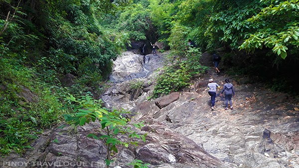Verdant forest that surrounds Kawa Falls