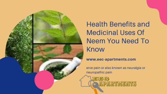 This is mainly because it contains illness-preventing and antibacterial compounds. The twigs, oil