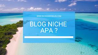 2 Niche Blog Ramah Google Adsense : Seri 17 Niche Blog Yang Paling Ingin Dimiliki Blogger