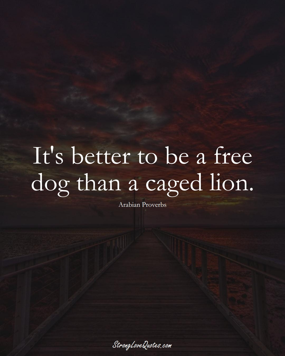 It's better to be a free dog than a caged lion. (Arabian Sayings);  #aVarietyofCulturesSayings