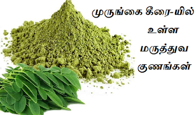 spinach drumstick benefits in tamil