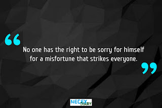 sorry quote #15