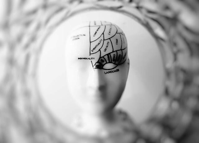 Human being brain