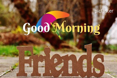 Good Morning Images For Friends HD Dowaload